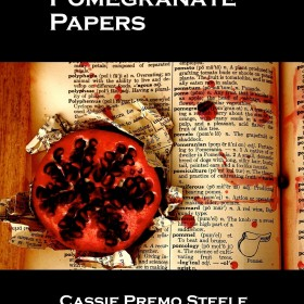 The Pomegranate Papers by Cassie Premo Steele