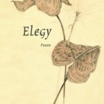 Elegy by Raphaela Willington